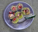Chestnut plate#2