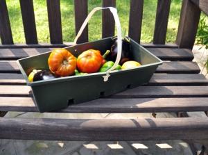 Veggies-fruit from garden-small
